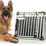 Aus der beliebten Petzplus Hundebox werden unterschiedliche 4Pets Hundeboxen