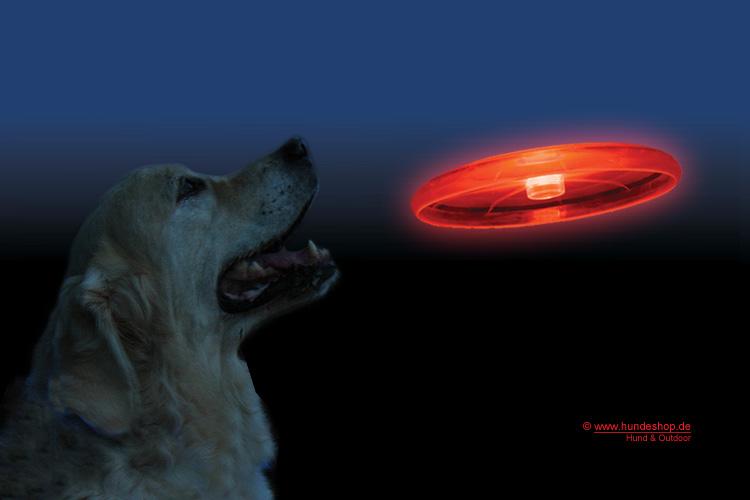 LED Frisbee für Hunde