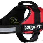 Julius K9 Power Geschirr im Test mit Jacky