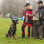 Ergebnisse Test Pinewood Dogsport Damenweste
