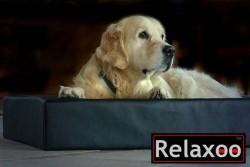 Relaxo3